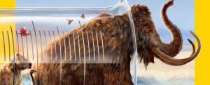 mammoth-cover-660x267