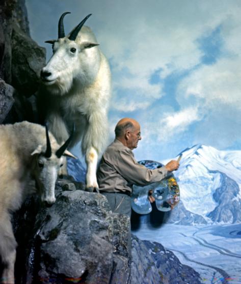 goat2.png
