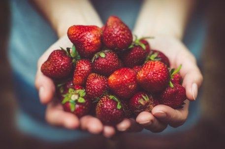 blog-foto-frutillas