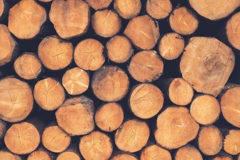 wood-1209632_1280