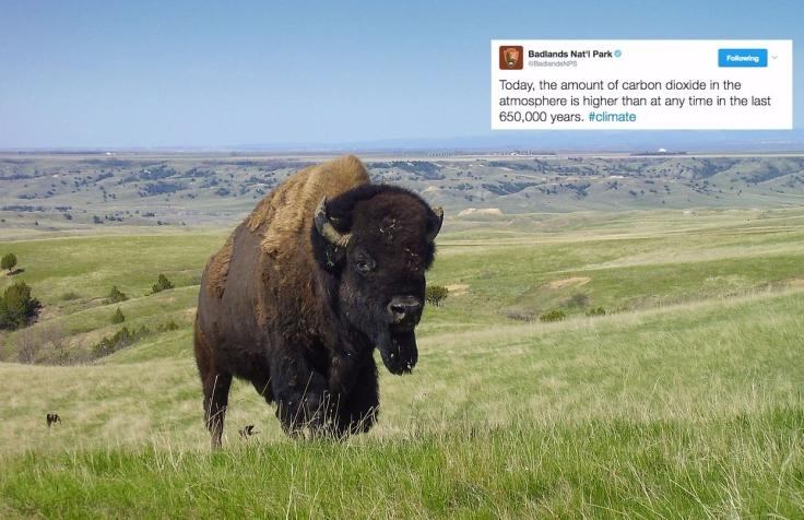 http://edition.cnn.com/2017/01/24/politics/badlands-tweets-climate-change/