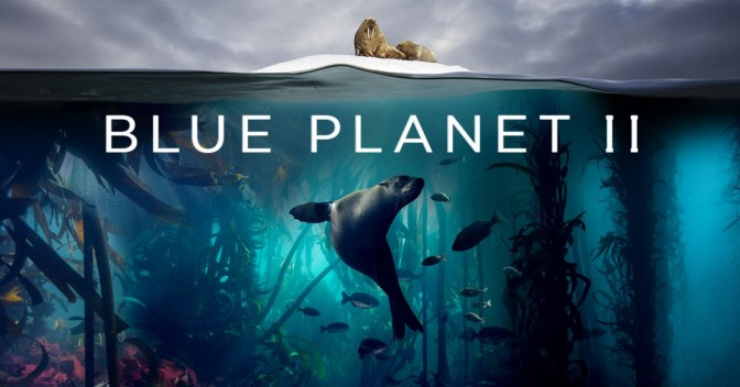 Blue Planet II: a Splash Hit for Ocean Conservation