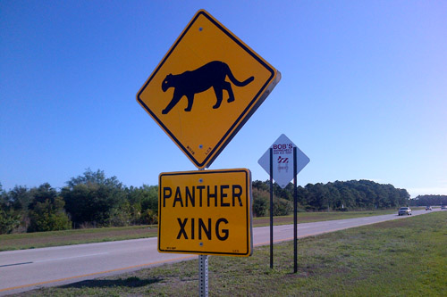 panthers-crossing