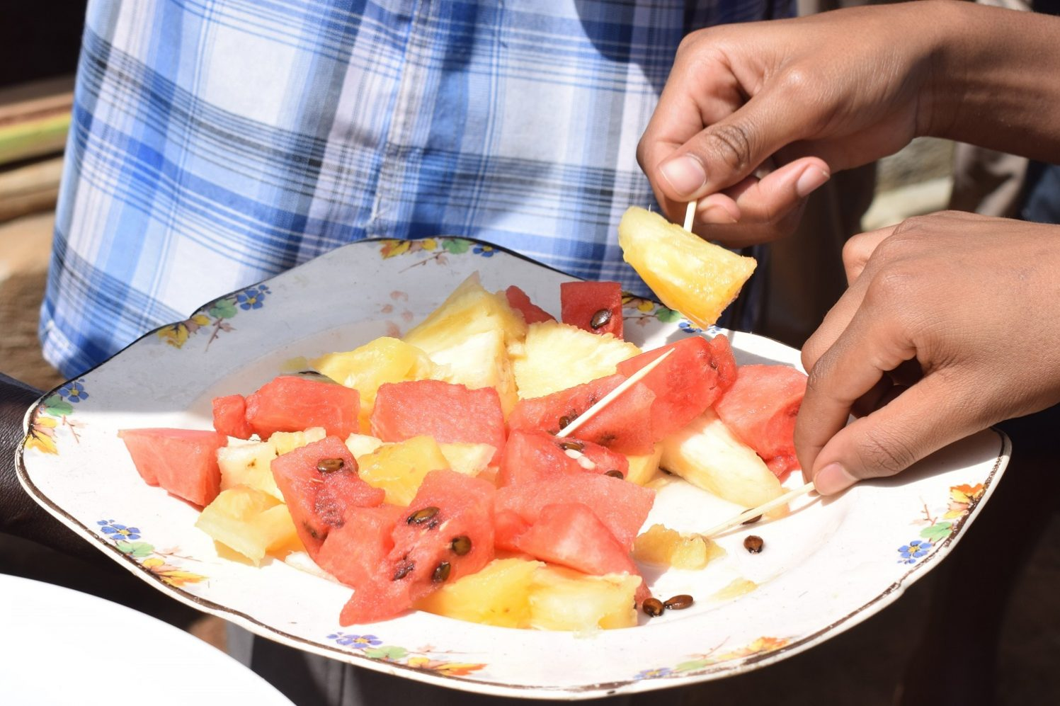 Pineapple & Melon